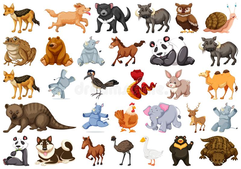 Set of animal character. Illustration royalty free illustration