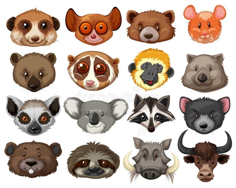 Set of animal heads stock illustration