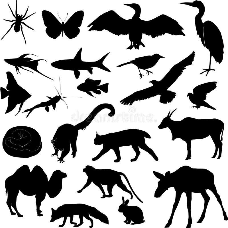 Set of animal silhouettes. On white background royalty free illustration