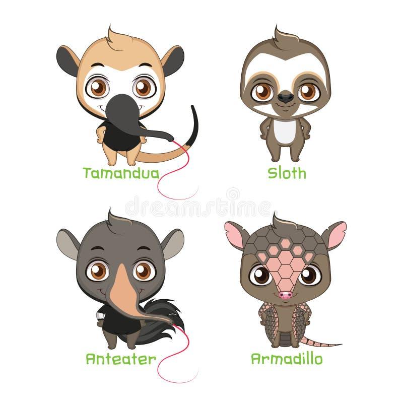 Set of animals belonging to the xenarthra family. Animals belonging to the xenarthra family vector illustration