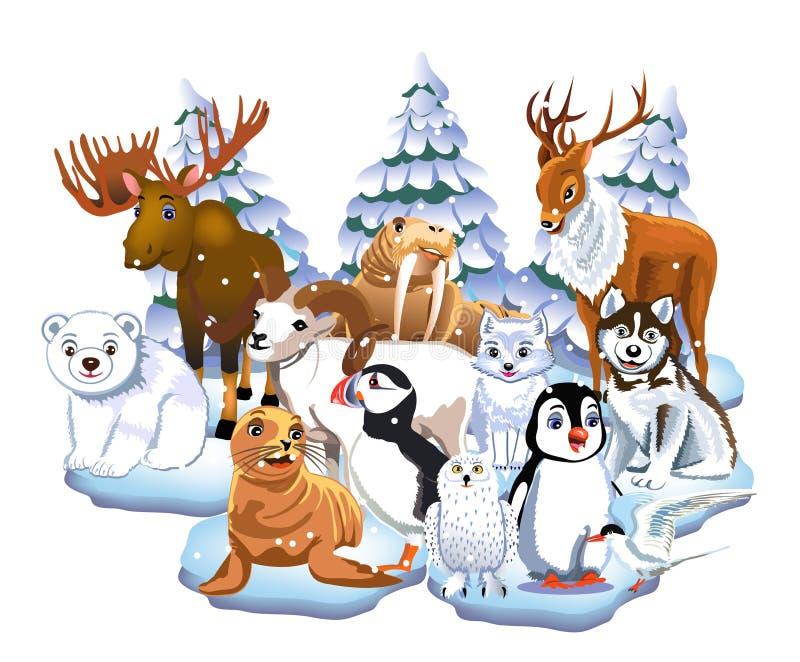 Set of arctic animals like seal, walrus, moose, reindeer, penguin, polar bear, fox stock illustration