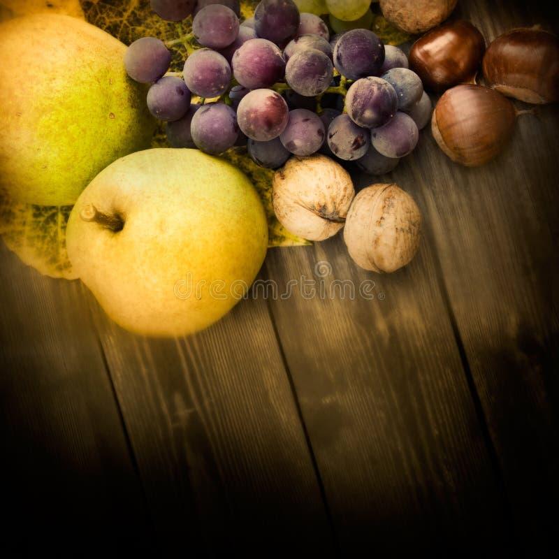 Set of autumn fruit stock image