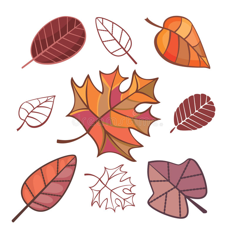 Set Of Autumn Leaves Stock Photos