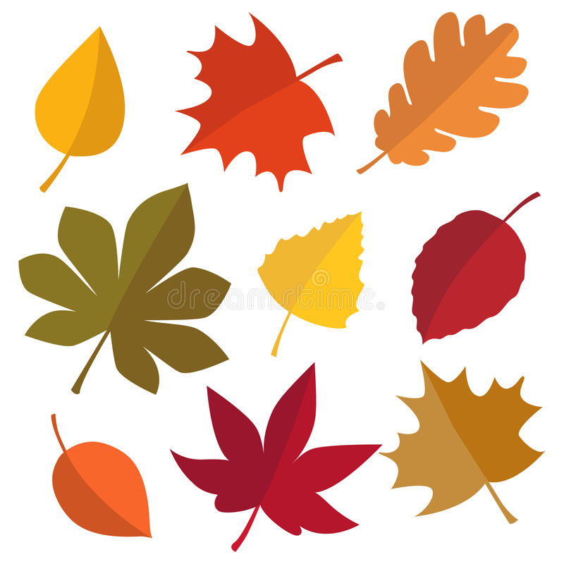 Set of autumn leaves vector illustration