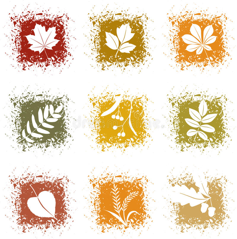 Set autumn leaves icons vector illustration