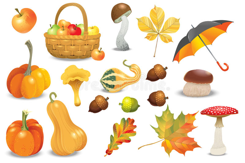 Set of autumn objects. Pumpkins different types, mushrooms, umbrella, apples and fall leaves. Vector illustration collection. Set of autumn objects. Pumpkins stock illustration