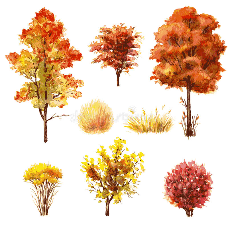 Set of autumn trees and bushes. royalty free illustration