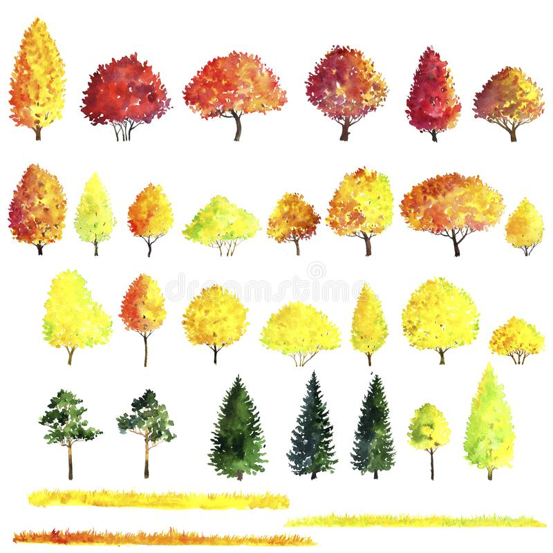 Set of autumn trees drawing by watercolor. Bushes, firs,pines and decidious, red and yellow foliage,isolated natural elements, hand drawn illustration stock illustration