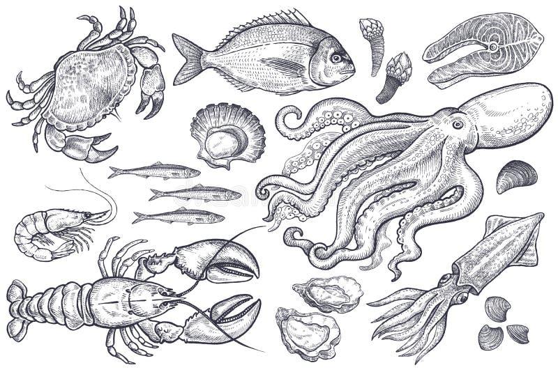 Set av havsmat vektor illustrationer