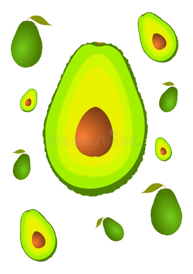 Set of avocado royalty free stock images