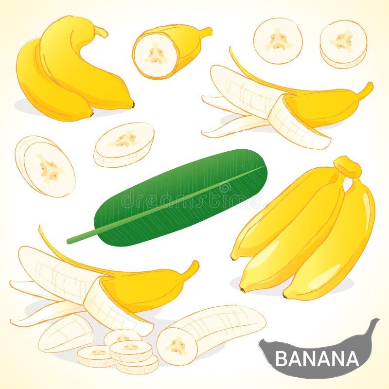 Set banan w różnorodnym stylu wektoru formacie royalty ilustracja