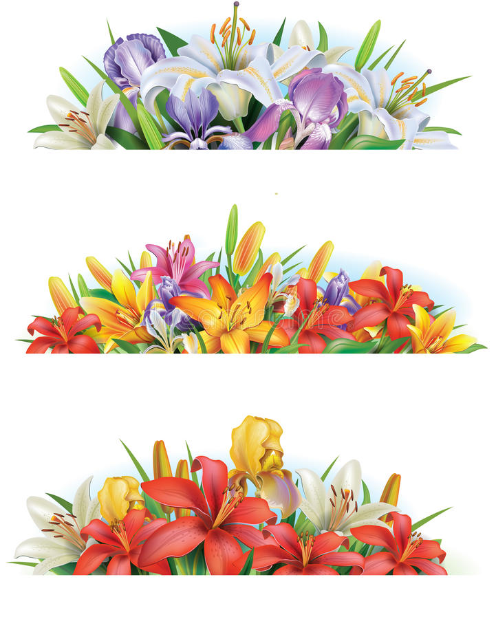 Set banners with flowers vector illustration