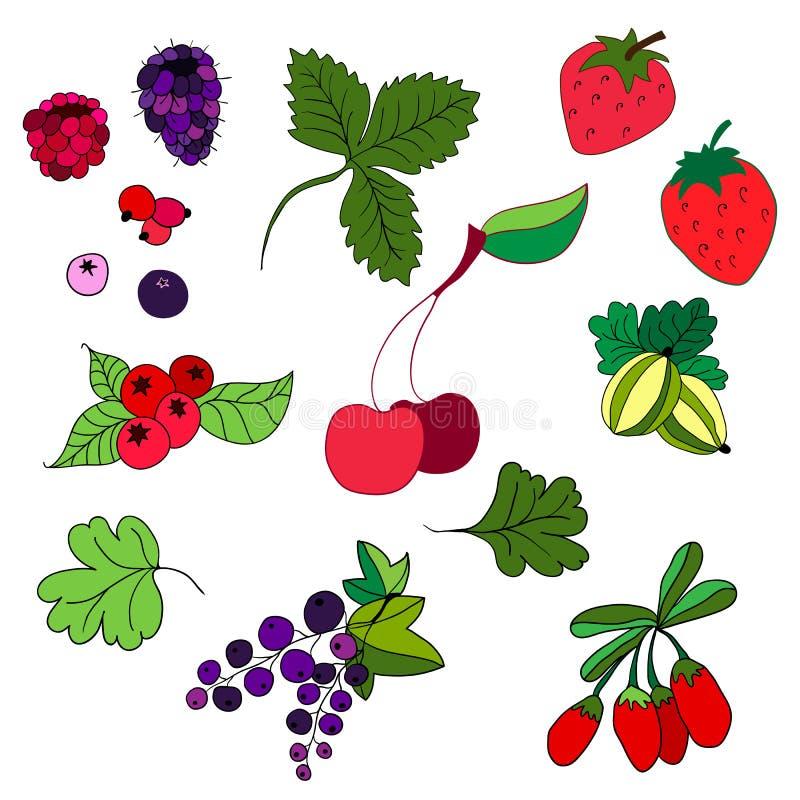 Set barwione jagody Truskawki, agresty, rodzynki royalty ilustracja