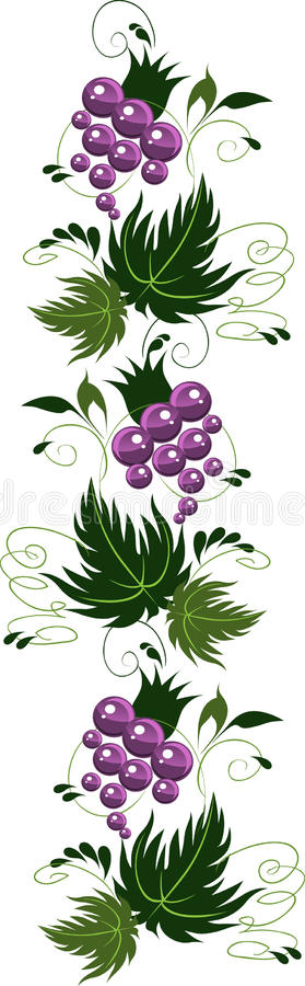Set of batch ornament from grapes. royalty free stock images