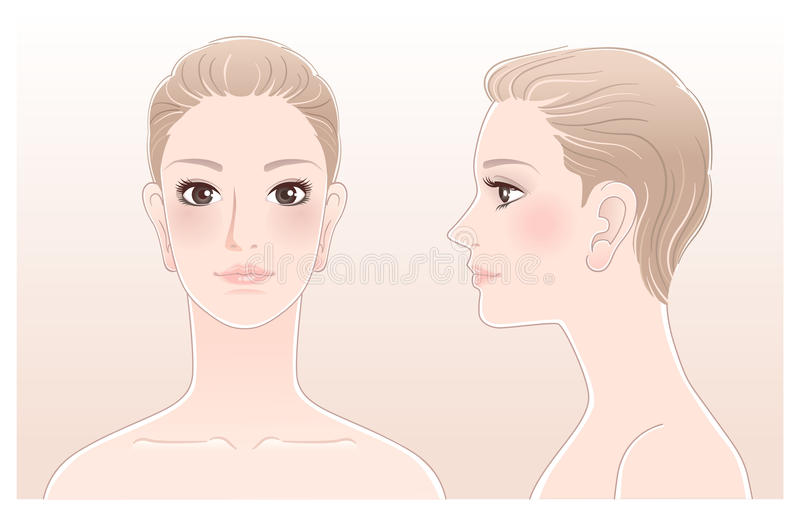 Set of Beautiful woman profile, front and side royalty free illustration