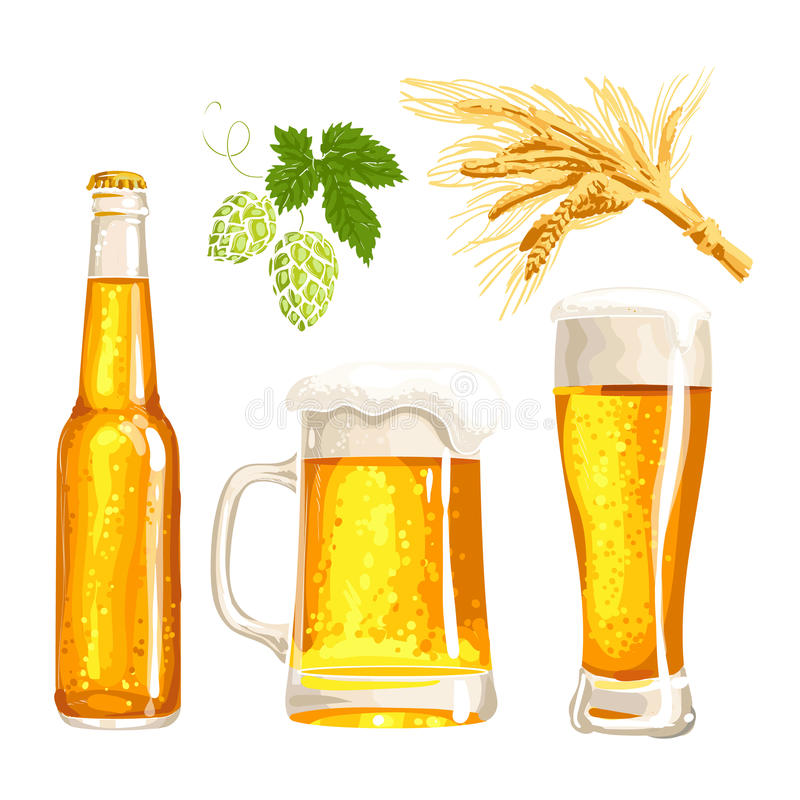 Set of beer bottle, mug and glass, malt, hop. Set of cold beer bottle, mug and glass, malt and hop, vector illustrations isolated on white background. Hand drawn stock illustration