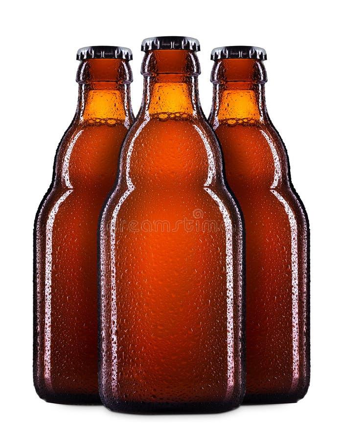 Set of beer bottles on white stock photos
