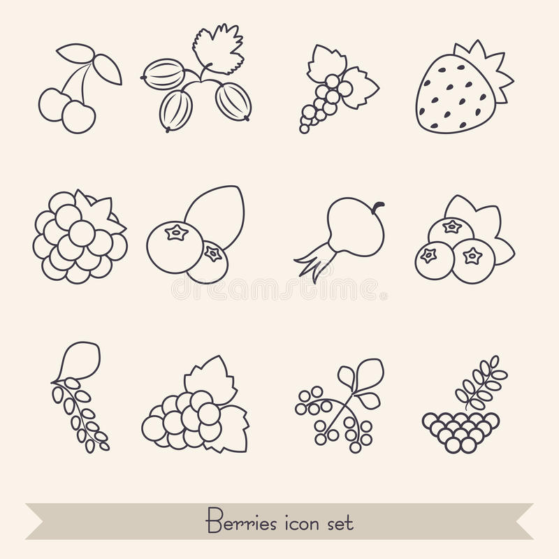 Set of berries icons vector illustration