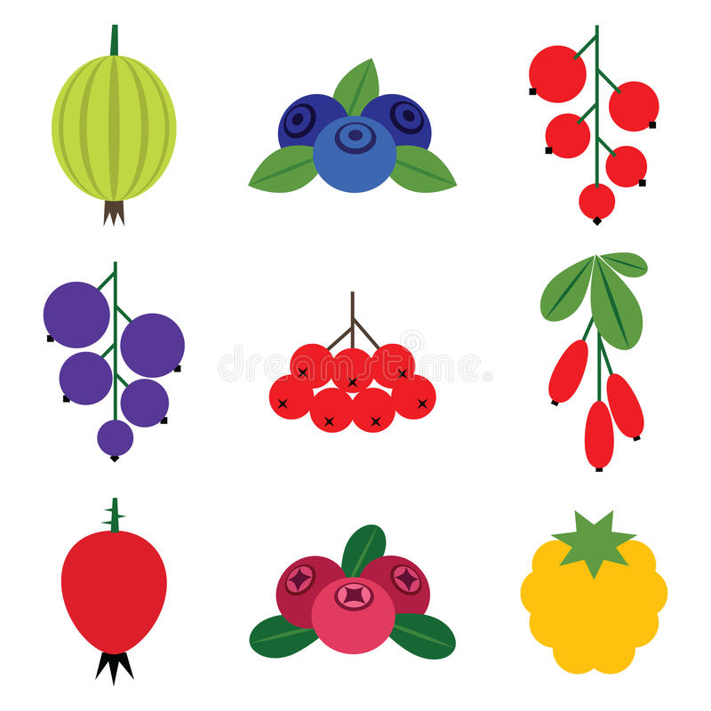 Berries Set Stock Photography