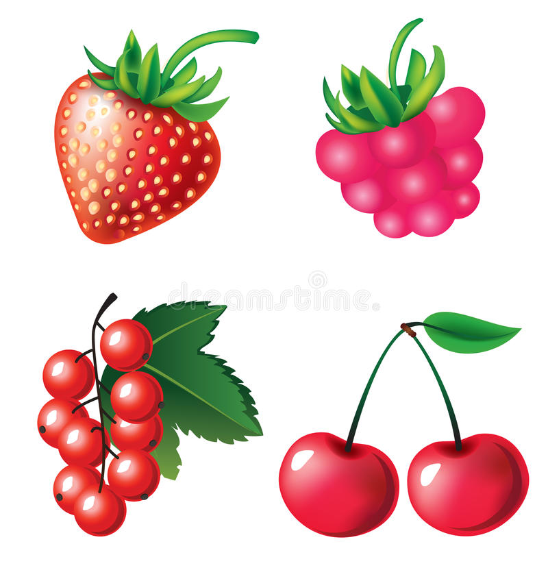 Download Set of berries objects stock vector. Image of culinary - 10931977