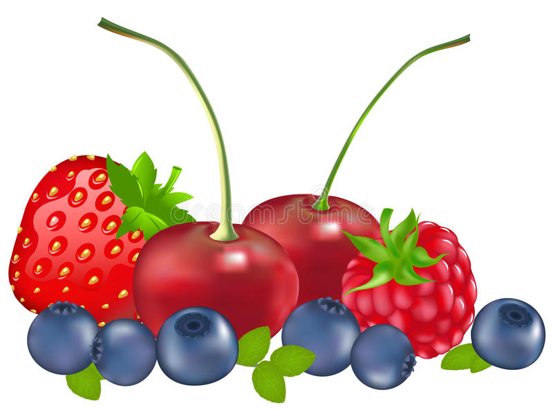 Set Of Berries. Vector. Set Of Berries (Strawberry, Blueberry, Raspberry, Cherry), Isolated On White royalty free illustration