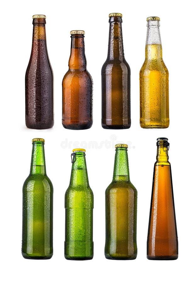 Set Bierflaschen stockfotos