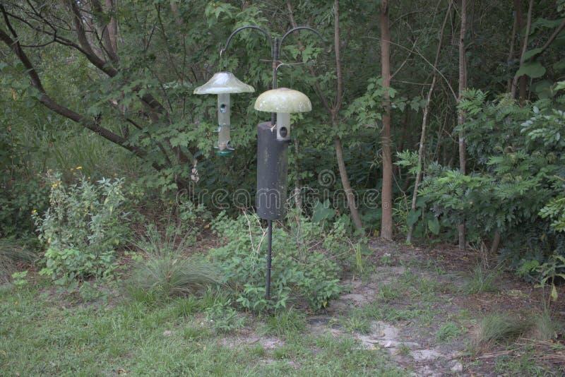 A set of bird feeders in Mead Botanical Garden. A set of bird feeders in Mead Botanical Garden in Orlando, Florida stock photo