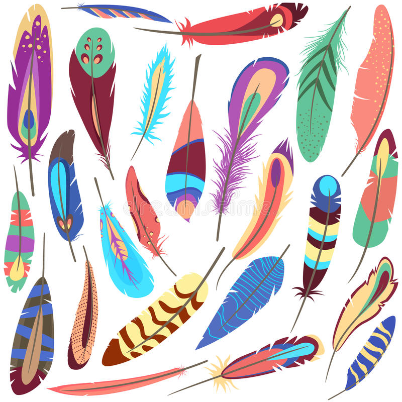 Set of bird fluffy and colorful feather. Set or collection of bird or flyer fluffy and colorful ornamental or decorative feather of american parrot or peacock stock illustration