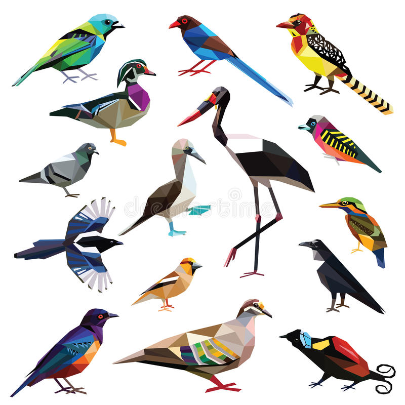 Set of birds. Birds-set colorful birds low poly design isolated on white background vector illustration