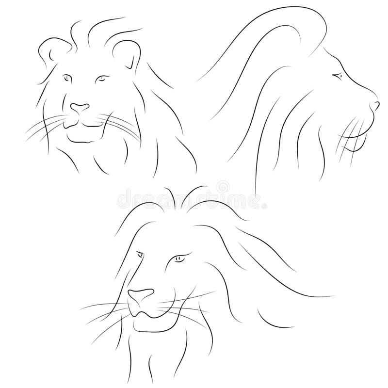 Set of black line lions heads on white background. Sketch style vector illustration