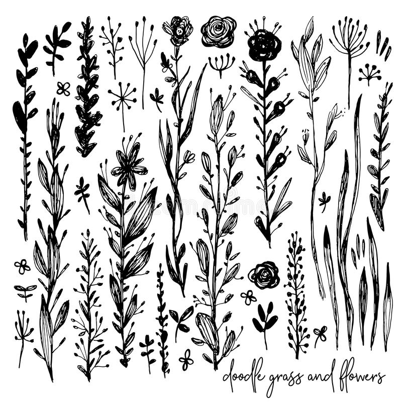 Set of black and white doodle elements, rose, grass, bushes, leaves, flowers. Vector illustration, Great design element. For congratulation cards, banners stock illustration