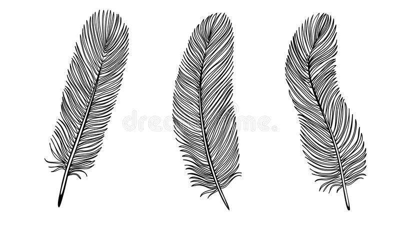 Download Set Of Black And White Feather. Stock Vector - Illustration: 34211372