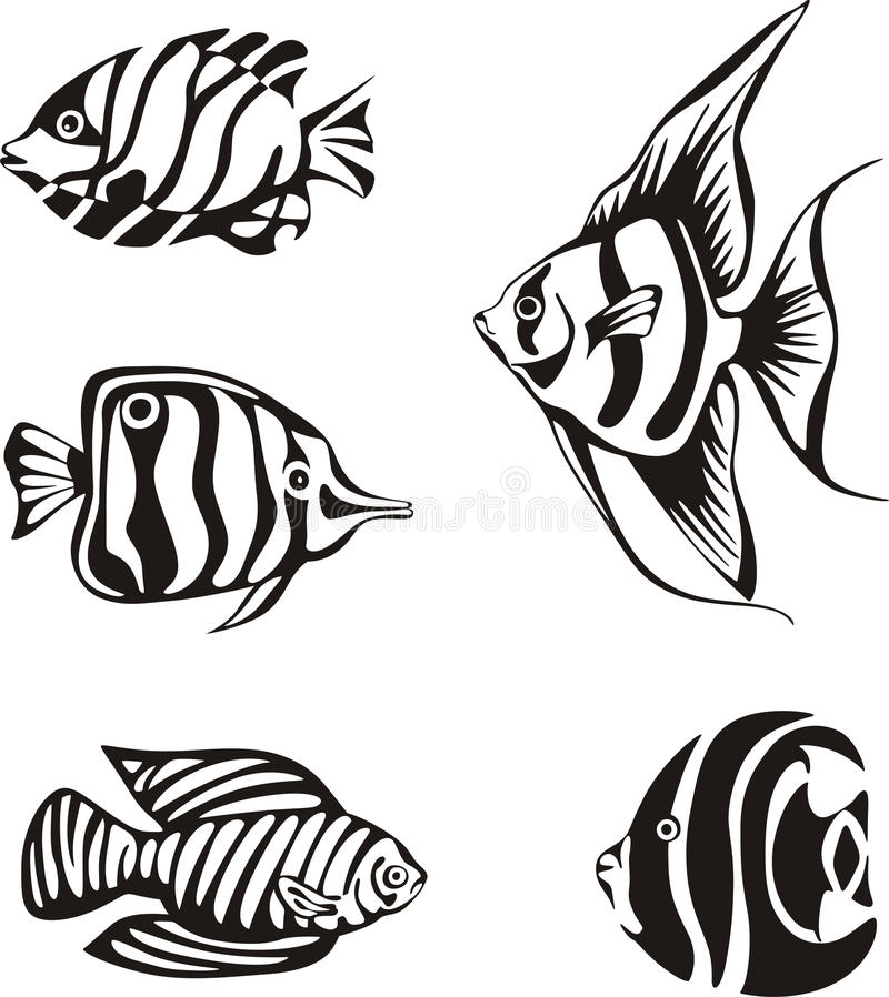 Set of black and white tropical fish vector illustration