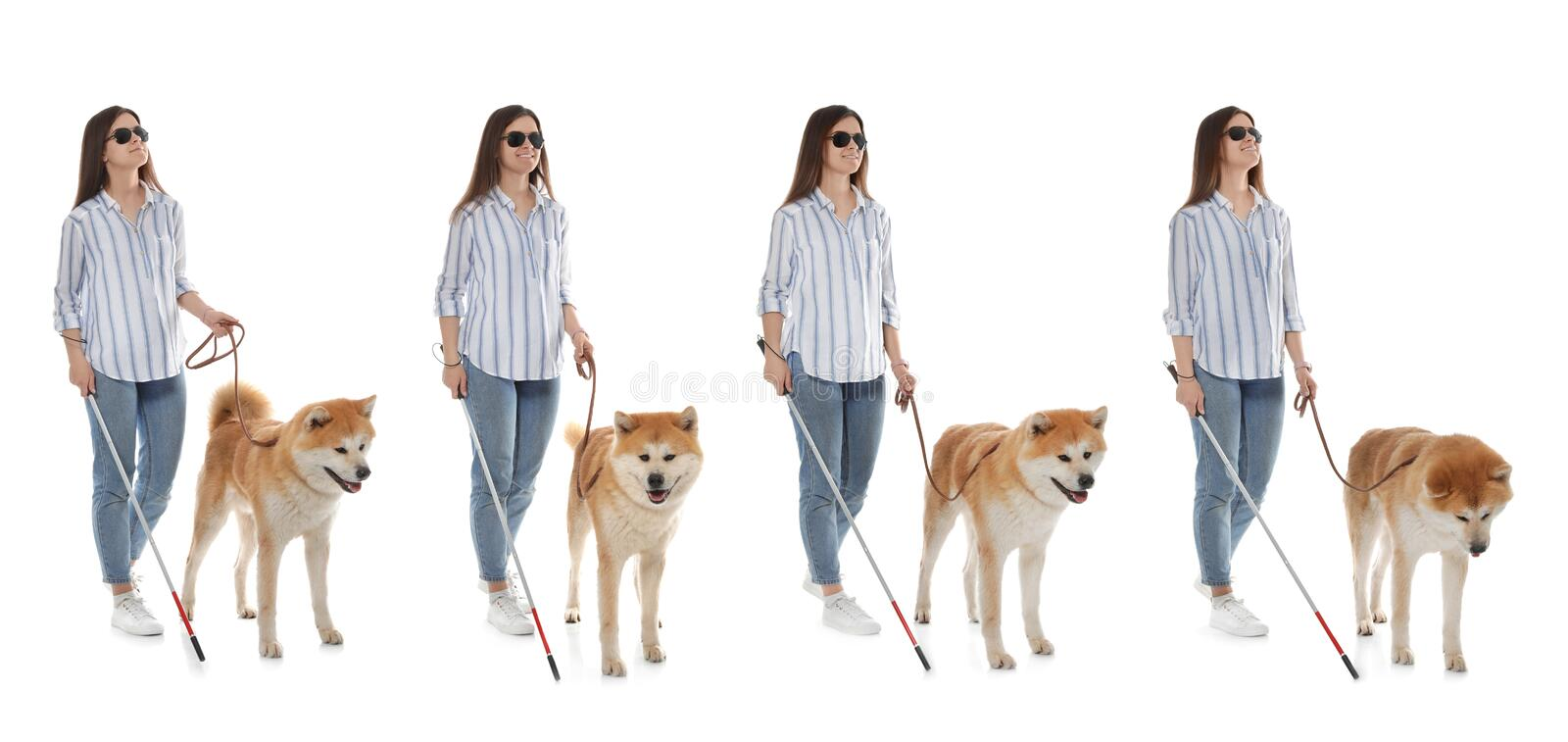 Set of blind woman with long cane and dog on white. Background stock photos