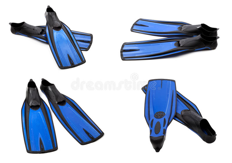 Set of blue swim fins for diving. Isolated on white background stock photo