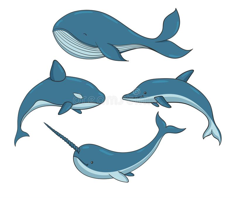 Set of blue vector underwater creatures with whales, narwhal and. Dolphin. Marine animals isolated on the white background stock illustration