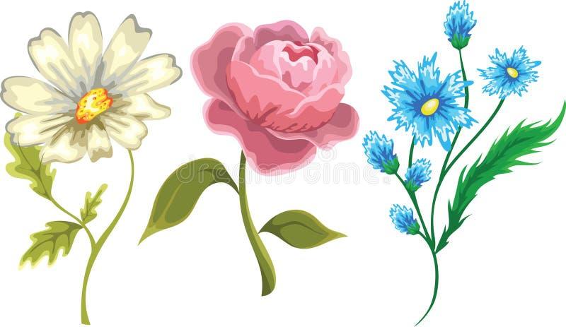 Set Blumen vektor abbildung
