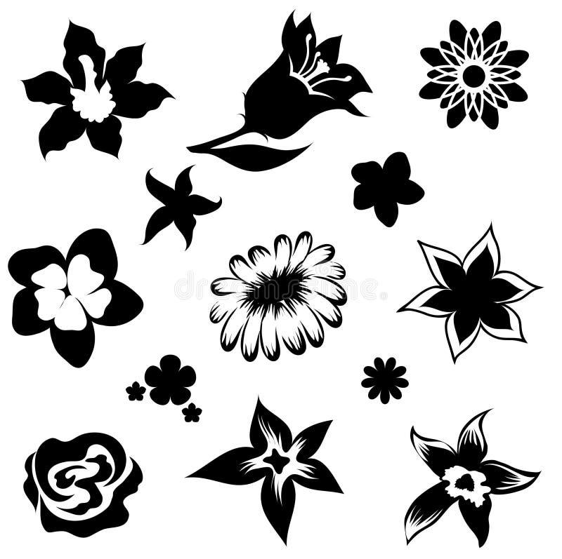 Set Blumenelemente stock abbildung