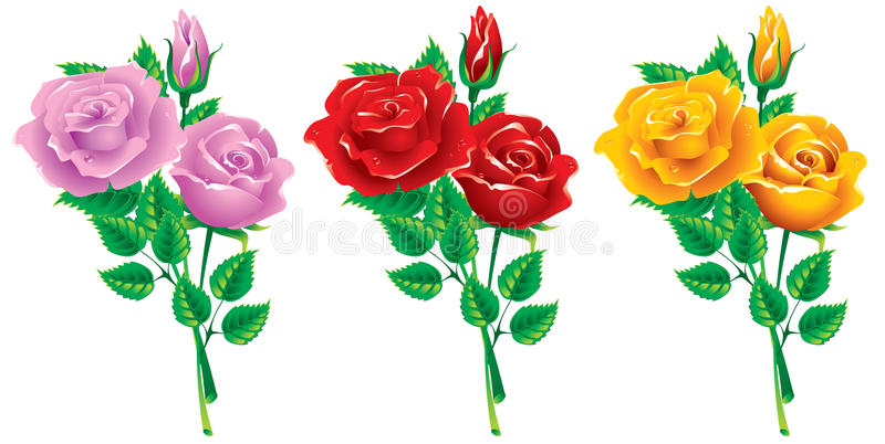 Set Blumensträuße der Rosen vektor abbildung