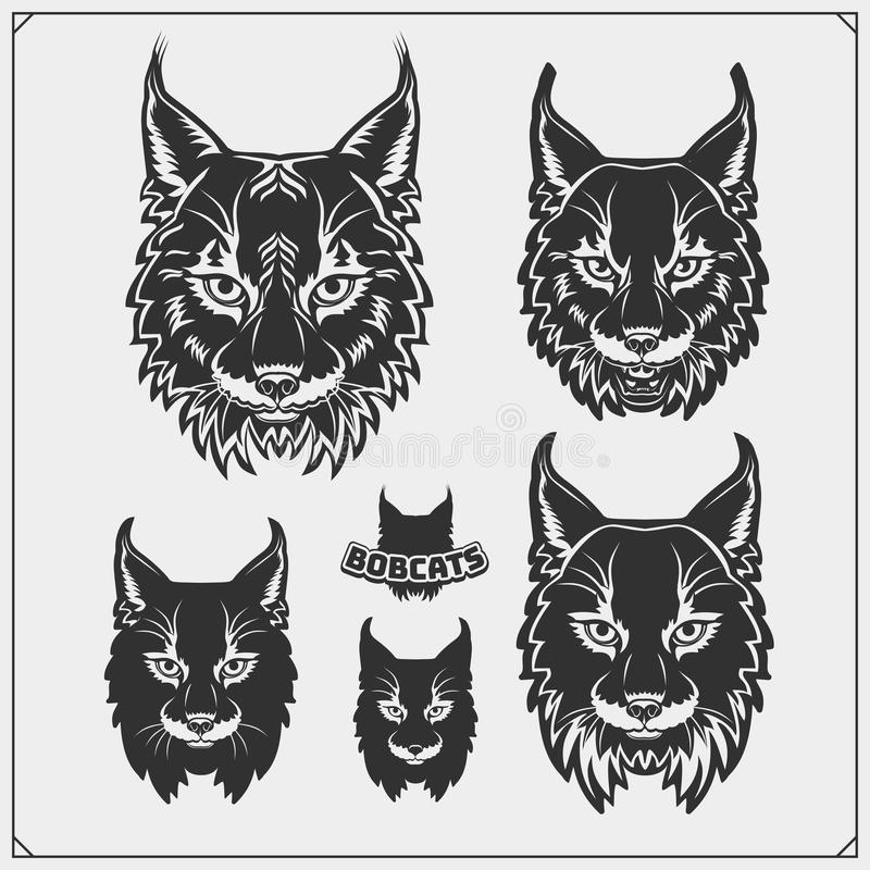 Set of bobcat illustrations and silhouettes. Emblems with bobcat for a sport team. Print design for t-shirts. Vector stock illustration