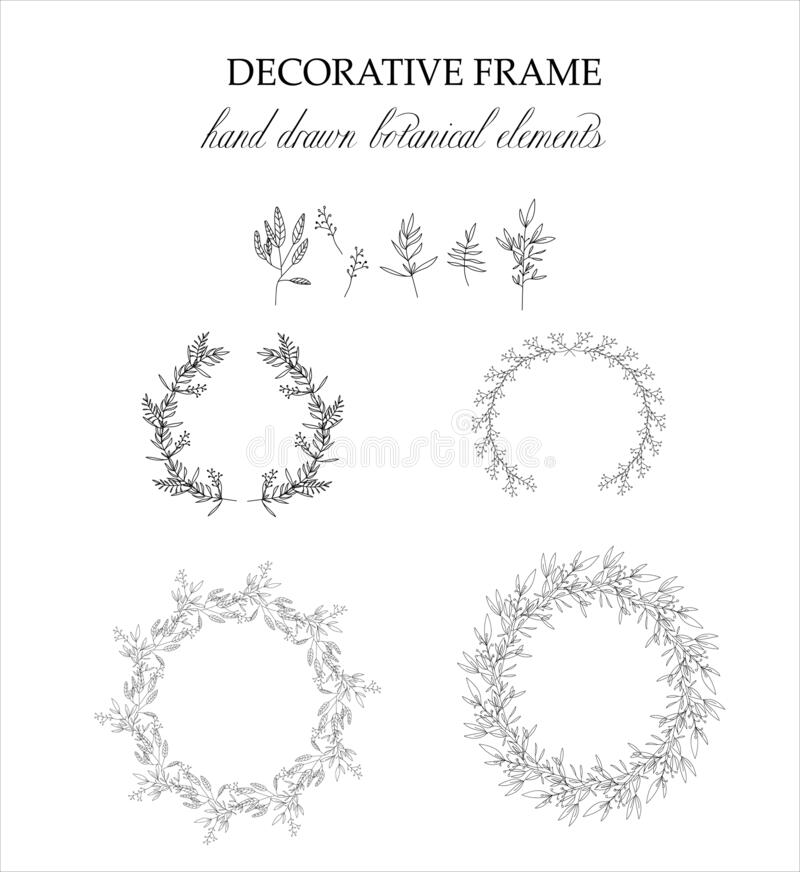 Set of botanical elements for design. Vector clipart royalty free stock image