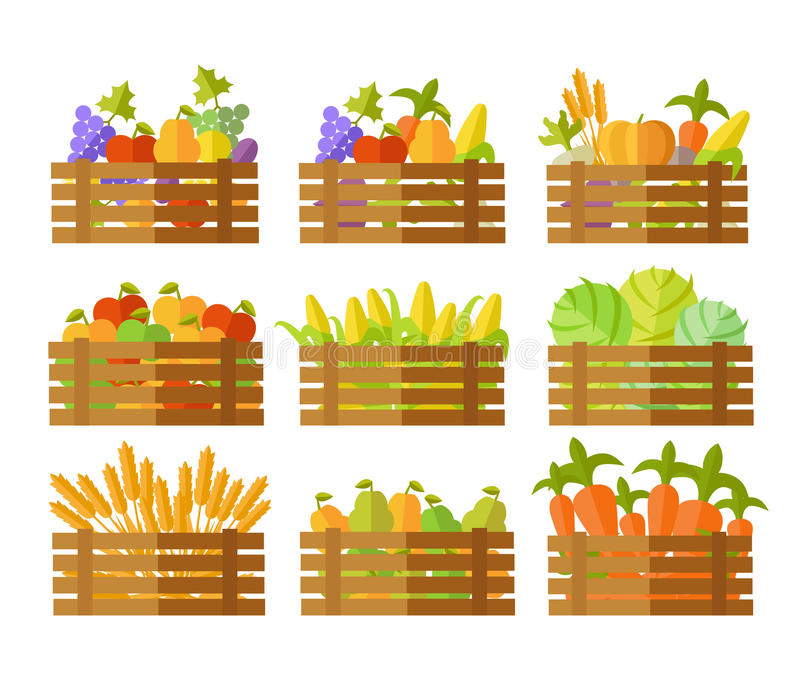 Set of Boxes With Fruits and Vegetables in Vector. royalty free illustration