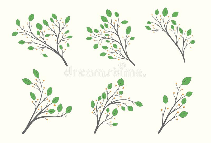 Set of branches with green leaves of different shapes and orange berries. On a light background vector illustration