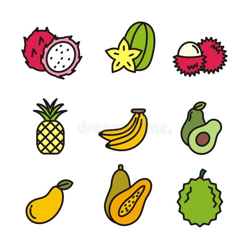 Set of tropical fruit vector illustration. Tropical fruit icons stock illustration