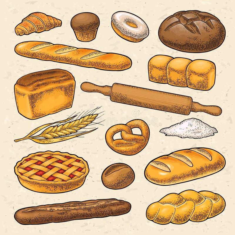 Set bread. Vector color vintage engraving illustration. Set bread. Vector color hand drawn vintage engraving illustration for poster, label and menu bakery shop vector illustration