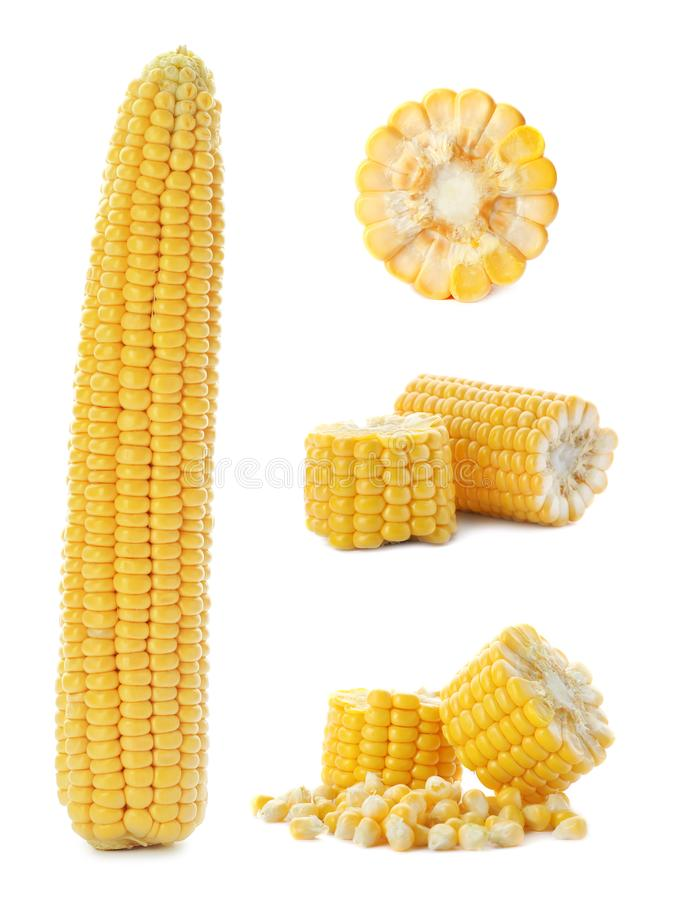 Set with broken corn cobs stock image