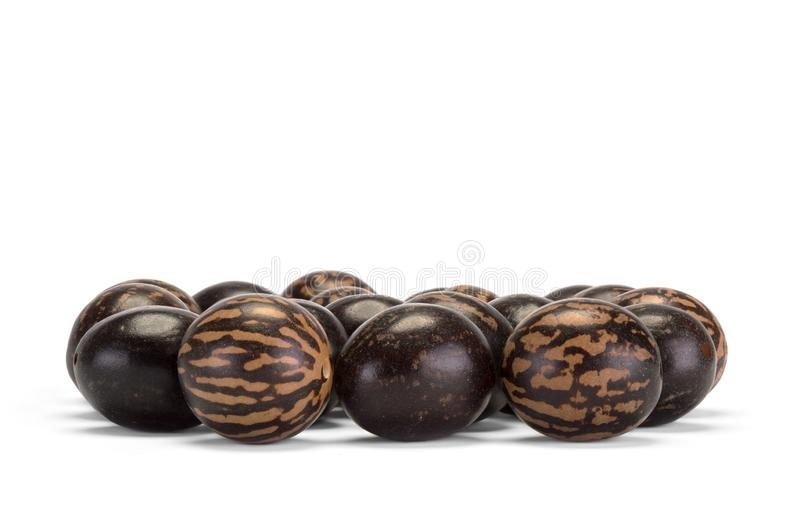 Set of brown spotted beads. Isolated on white background. Set of brown and spotted beads. Isolated on white background. Top view photo royalty free stock photography