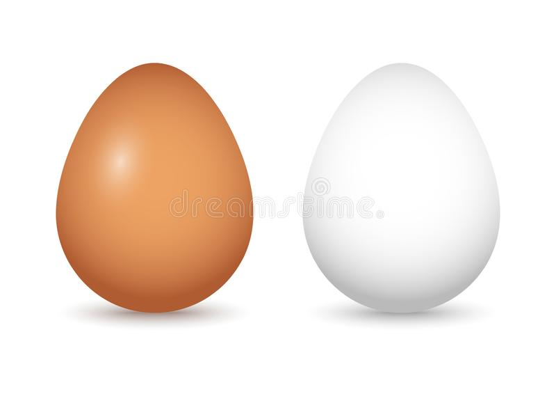 Set of brown and white eggs with shadow. Vector. Illustration royalty free illustration