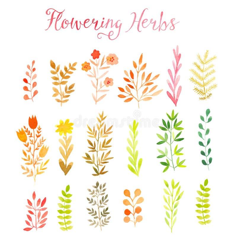 Set bunte Herbstblätter Auch im corel abgehobenen Betrag Vektorsatz des roten Herbstaquarells verlässt und Beeren, Hand gezeichne lizenzfreie abbildung