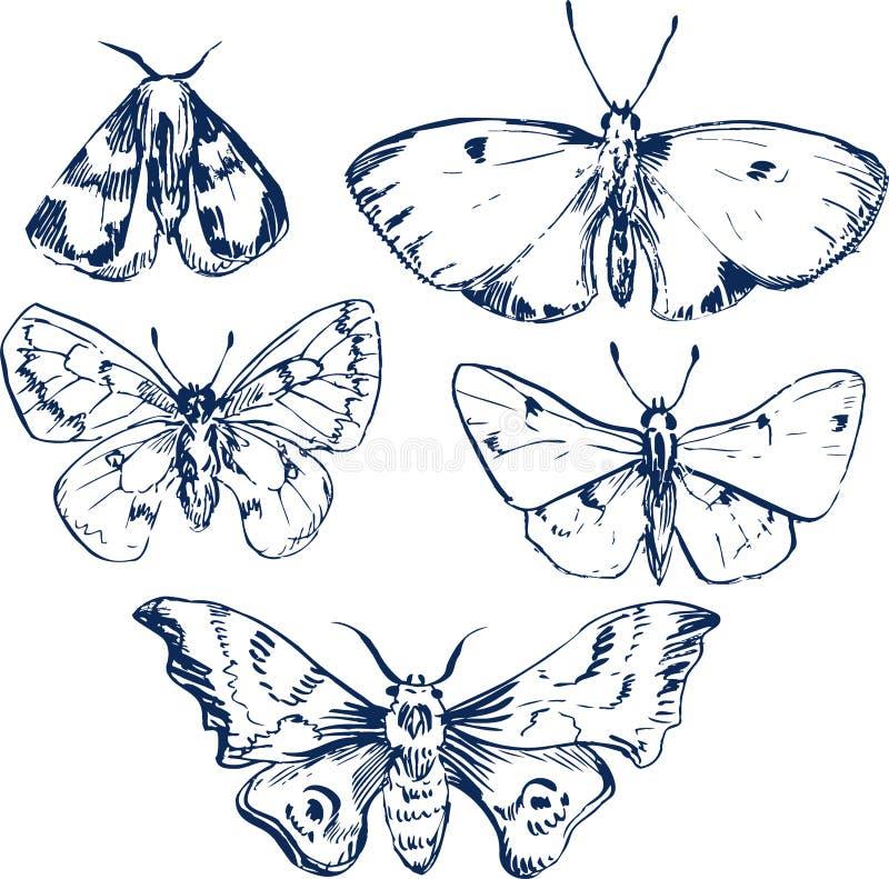 Download Set of butterflies stock vector. Image of line, sketch - 35614482